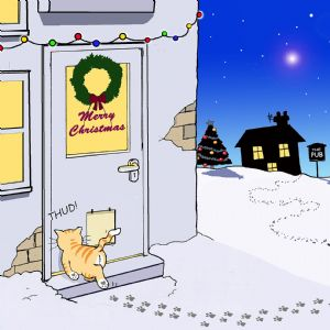 CANX29  Funny Cat Christmas Card